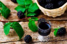 Настойка на ежевике: полезные свойства, рецепт