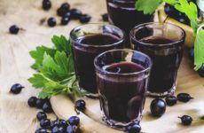 Вкусная смородиновая настойка: польза, рецепт