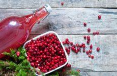 Брусничная настойка: польза напитка, приготовление