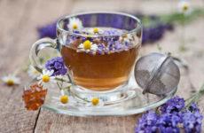 Чай из душицы — рецепты заваривания и польза