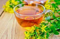 Чай из зверобоя: лечебные свойства, рецепт заварки