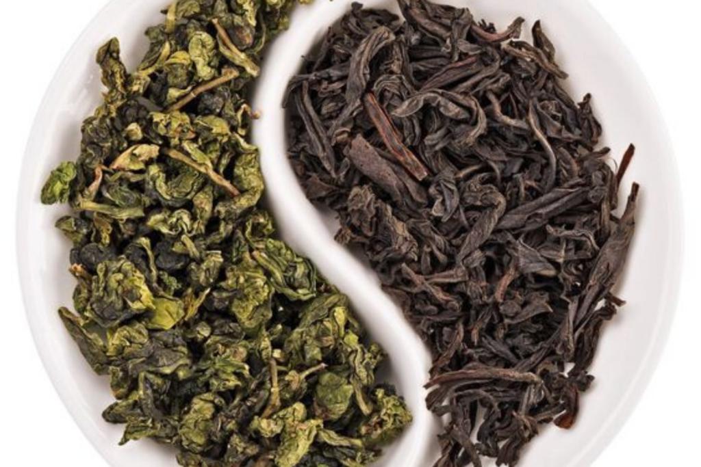 чем отличается зеленый чай
